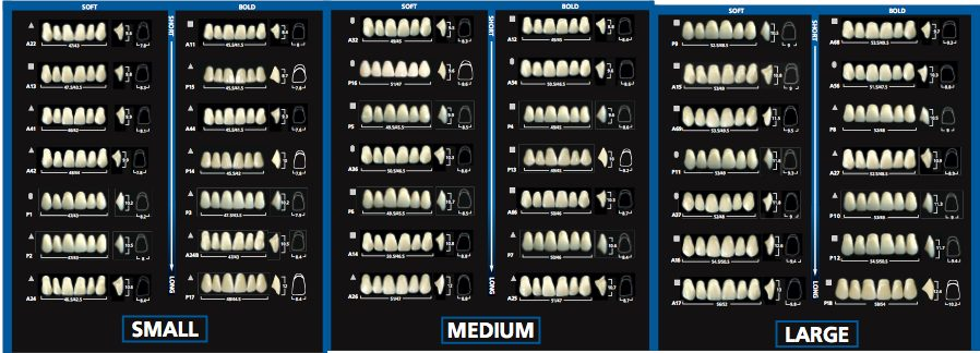 Different denture types